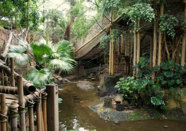 Het_Heijderbos_01-Jungle_Dome