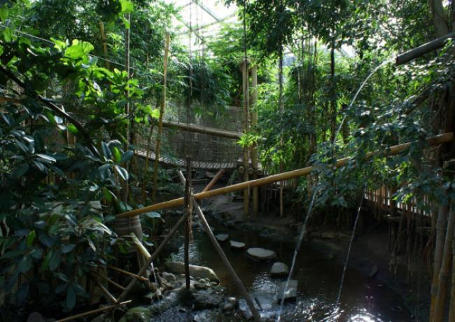 Het_Heijderbos_02-Jungle_Dome