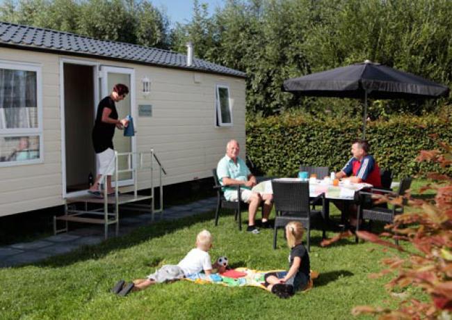 Rondeweibos | Rockanje, Zuid-Holland