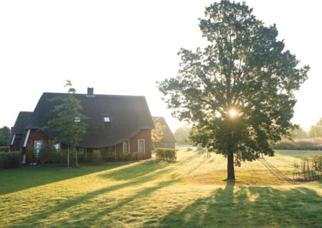 Hof-van-Saksen-1-