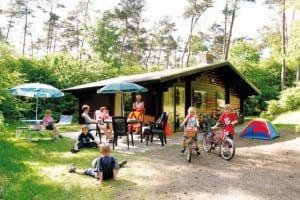 Chalets en bungalows te huur