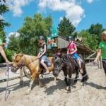 Het Land van Bartje | Ees, Drenthe